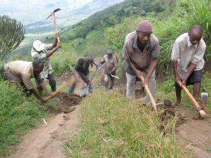 road-digging-289